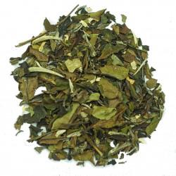 Islands Tea